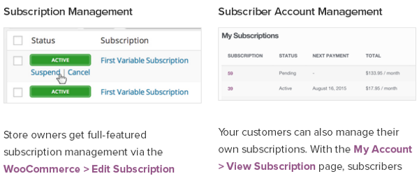 woocommerce-subscriptions